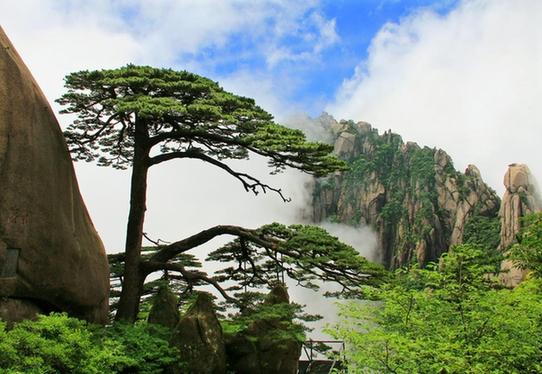 黄山成功入选世界生物圈保护区 华声在线衡阳频道